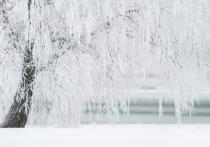 Ослабнут ли морозы в Ульяновской области