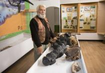 Знаменитого ульяновского палеонтолога отстранили от проекта по созданию геопарка
